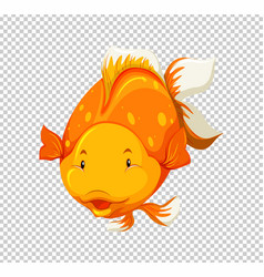 Cute goldfish swimming on transparent background vector