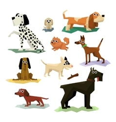 Different Dog Breeds Set vector image
