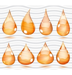 Transparent orange drops vector