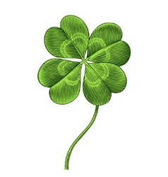 Clover symbol of patrics day vector