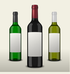 set of three realistic wine bottles with vector image