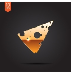 cheese icon Eps10 vector image