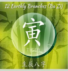 set of chinese feng shui hieroglyphs vector image