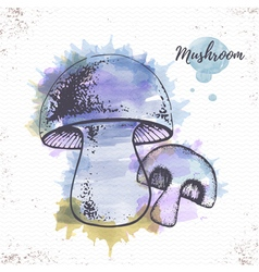 Watercolor mushroom sketch vector