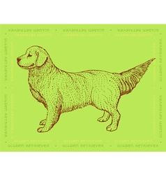 Dog golden retriever on a green ornamental backgro vector