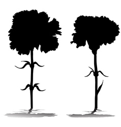 Carnations silhouettes vector
