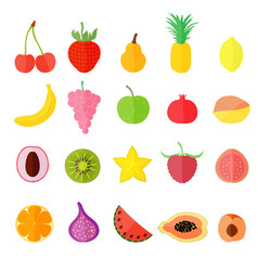 Set with various fruits vector