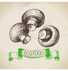 Hand drawn sketch mushrooms vegetable eco food vector