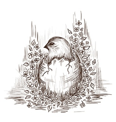 Hand drawn of chicken in the egg vector image
