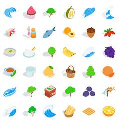 Genuine icons set isometric style vector