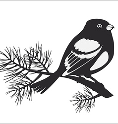 Black silhouette of bullfinch vector