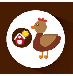 Farm countryside animal chicken design vector