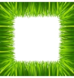 Border frame green grass isolated on white vector