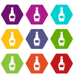 big bottle icon set color hexahedron vector image vector image