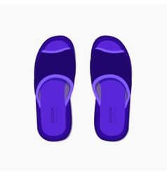 modern flippers on gray bakground vector image