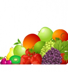 Bright fruit vector