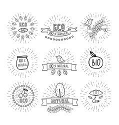 Modern hand drawn design organic vector