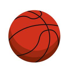 Ball basketball sport equipment vector