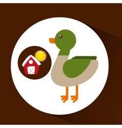 Farm countryside animal duck design vector