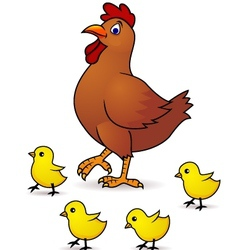 mother hen with baby vector image vector image