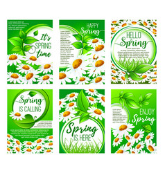 Spring flower greeting card set for holiday design vector