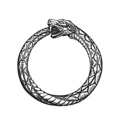Ouroboros snake eating its own tail eternity or vector