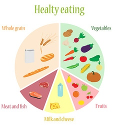 Healthy eating chart vector