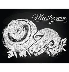 Mushrooms on the chalkboard background vector