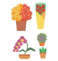 Variety of colorful flowers vector