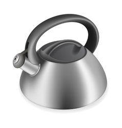 Iron kettle with a whistle vector