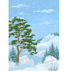 Winter christmas landscape with trees and snow vector