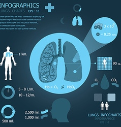 Lungs infocharts vector