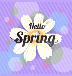 Floral spring with white flower vector