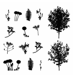 Set of plant tree foliage elements silhouette vector