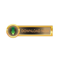 Gold button with downloads sign vector