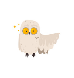 cartoon white owl with crazy round eyes vector image