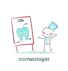 stomatologist says a presentation on the tooth vector image vector image