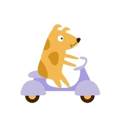 Dog riding a scooter vector