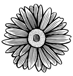 Black and white daisy flower vector