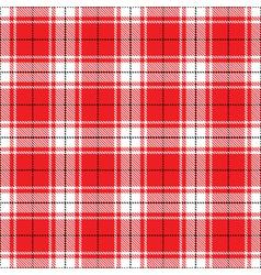 tartan vector image
