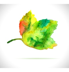 Watercolor color leaf design element vector image