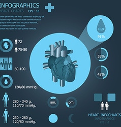 Heart infocharts vector