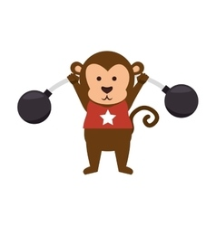 Funny monkey circus icon vector