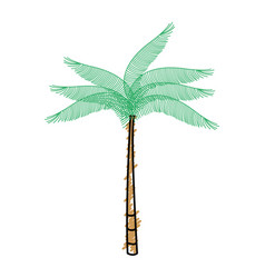 Tree palm tropical icon vector