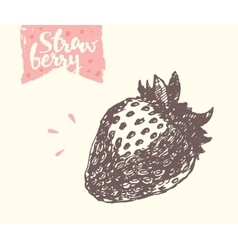 Hand drawn strawberry sketch vector