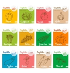 Vegetables sketch icons with names vector