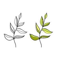 leaf black and white for coloring vector image