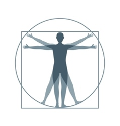 Cartoon silhouette vitruvian man vector