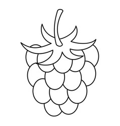 raspberry icon outline style vector image vector image