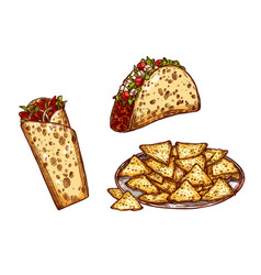Sketch icons fast food snacks tacos burrito vector